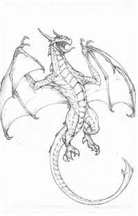 Cool Dragon Drawings