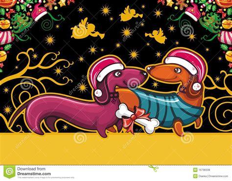 christmas dachshund greeting card royalty  stock