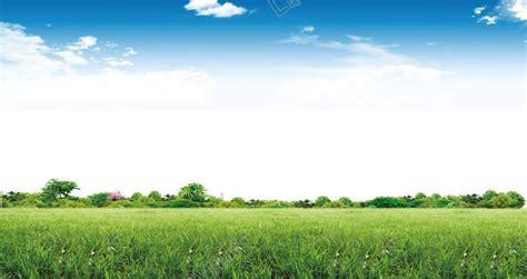 ท้องฟ้าพื้นหลังธรรมชาติป่าหญ้า