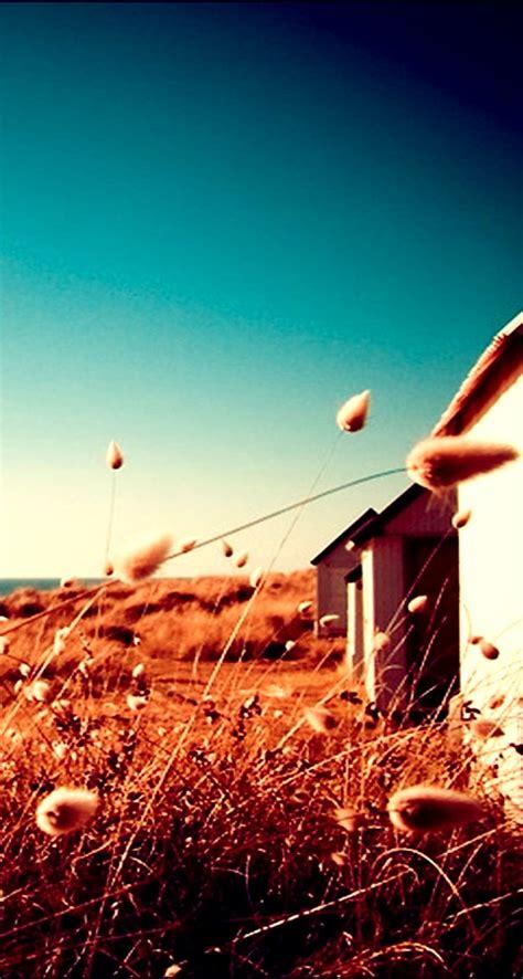 640 x 1136 jpeg 146 кб. Beach house - The iPhone Wallpapers