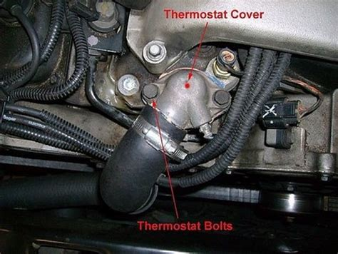 replace  cars thermostat