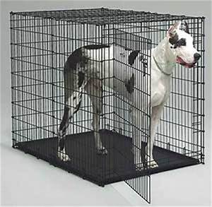 Large dog crate 2 day sale ships free for Large dog cages for sale cheap