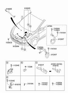 918503y110 - Hyundai Battery Cable  Positive Cable  Wiring Assembly