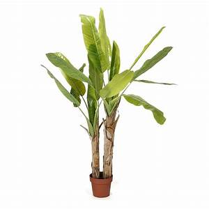 Plante Artificielle Alinea : 17 best images about alinea pe 2014 on pinterest vases belle and vase ~ Teatrodelosmanantiales.com Idées de Décoration
