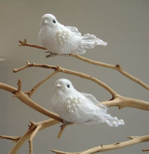 two turtle doves fake turtle doves inside a small bird