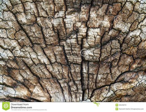 Old Log Texture Stock Image. Image Of Cracks, Sawed