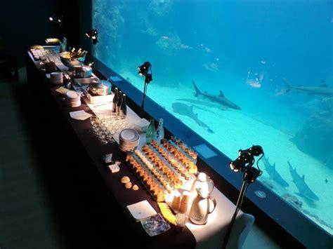 aquarium de lyon adresse salle aquarium de lyon seminairederniereminute