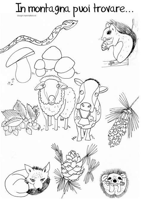 disegni da colorare animali disegno da colorare animali della montagna disegni