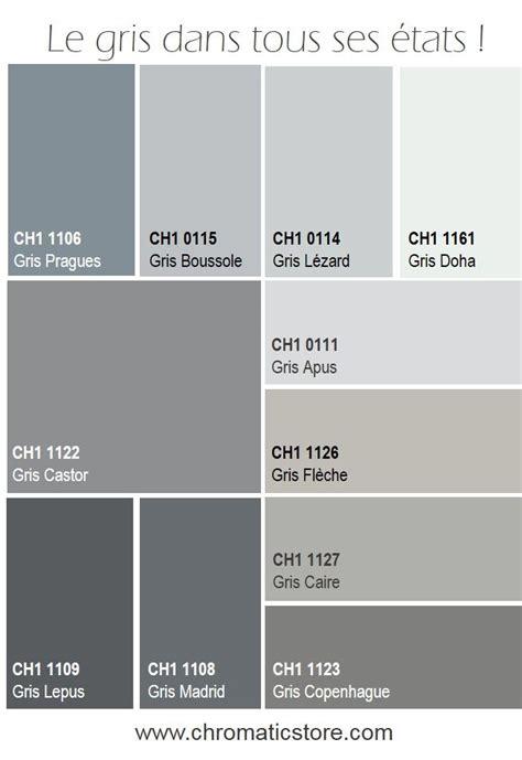 Escalier Couleur Gris by 25 Best Ideas About Salon Gris On Pinterest Sofa Gris