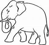 Elephant Coloring Pages Asian Printable Simple Cartoon Strutting Getcoloringpages sketch template