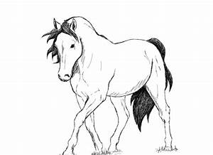 horse sketch by shango266 on deviantART
