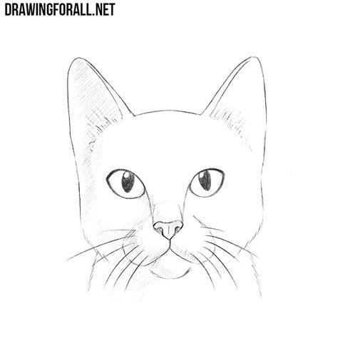 sketch  beginners