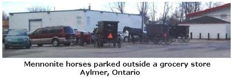 Mennonite Sheds Aylmer Ontario by The Mennonites Of Southern Ontario