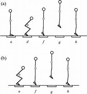 Standing Vertical Jump