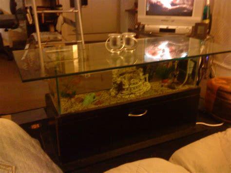 aquarium d occasion le bon coin 28 images aquarium contre poney perles du bon coin meuble