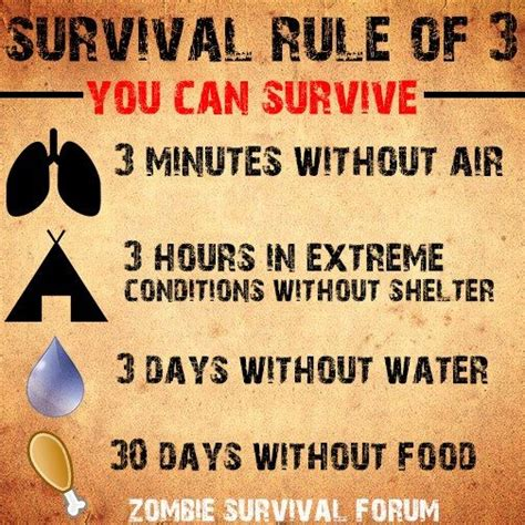 Survival Rule Of 3  Survival Tips & Tricks  Pinterest  Survival, Apocalypse Survival And