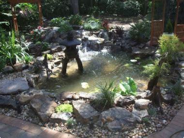 Certified Aquascape Contractor by Jim S Pond Water Garden Orlando Central Florida Water