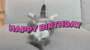 Happy Birthday Cat GIF - Find & Share on GIPHY