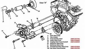 91 Corvette Tpi Engine Diagram  U2022 Downloaddescargar Com