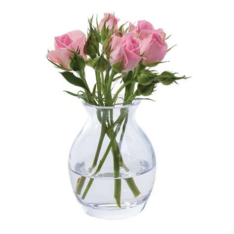 Large Glass Flower Vase by Flower Garden Bloom Vase Dartington