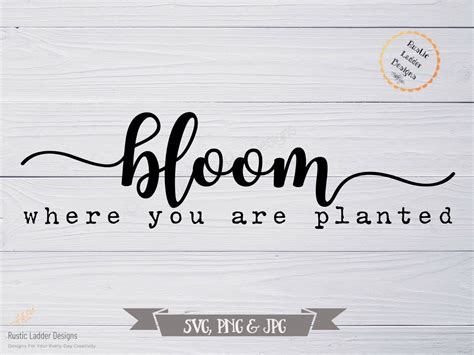 We're so glad you've stopped by for a visit! Bloom Where you are Planted SVG | Inspirational saying ...
