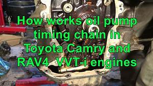 How Works Oil Pump Timing Chain In Toyota Camry And Rav4
