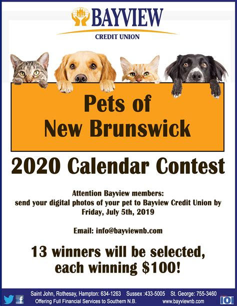 bayview credit union calendar contest