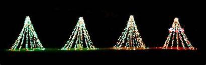 Lights Animated Tree Blinking Wallpapers Unterhaltung Nexus