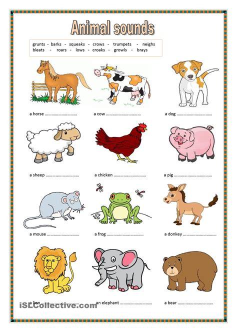 animal sounds key included angol nyelv animal