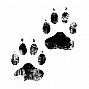 Transparent Dog Paw Quotes. QuotesGram