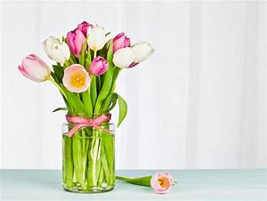 Tulpen In Vase : tulpen in der vase pflegen so halten sie am l ngsten ~ Orissabook.com Haus und Dekorationen