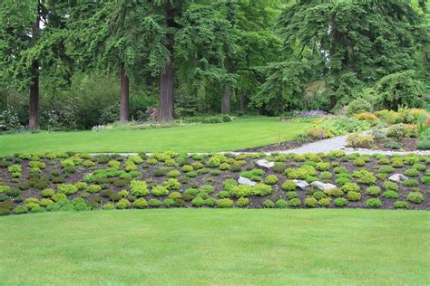 landscape berm design top 28 berm landscaping pictures pin by moriah mcpherson on outdoor stuff pinterest