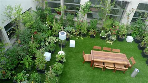 Garden Types : Types Of Plant To Decorate Roof Garden