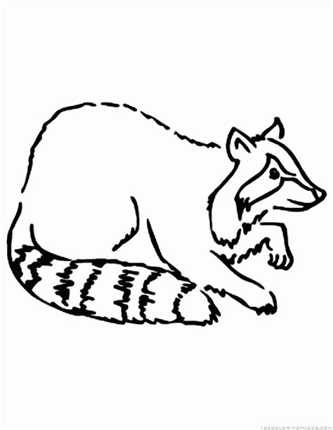 coloring pages  raccoons printable raccoon coloring