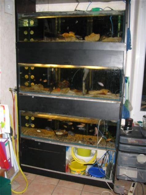 batterie aquarium mes cichlid 233 s du malawi