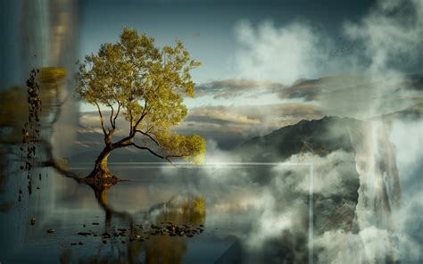 lone tree photo manipulation art id  art abyss