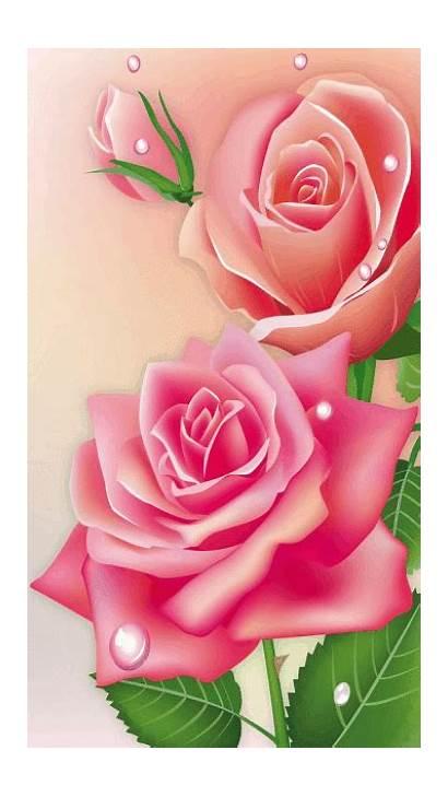 Animated Flowers Rose Flower Roses Gifs Rosas
