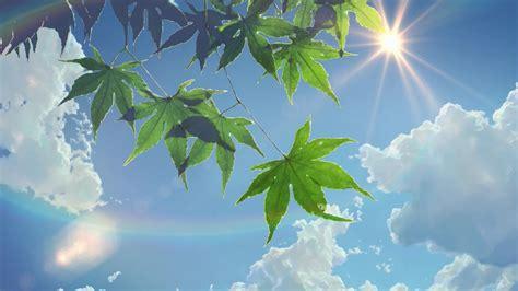 Summer Anime Wallpaper - summer sunlight leaves the garden of words sun rays