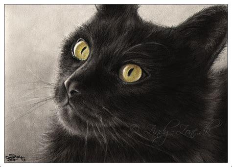 october    black cat art