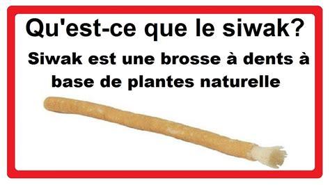 qu est ce que le siwak siwak est une brosse 224 dents 224 base de plantes naturelle
