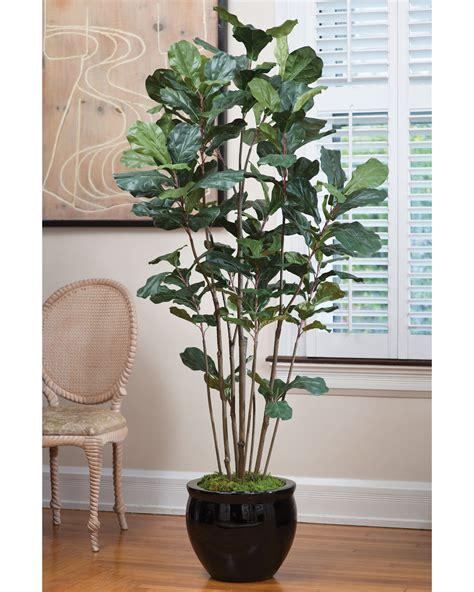 faux fiddle leaf value priced 7 39 fiddle leaf fig silk tree at petals