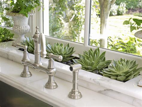 House Plants For Kitchen Window by Indoor Plant Displays Built Ins Wall Pockets And More