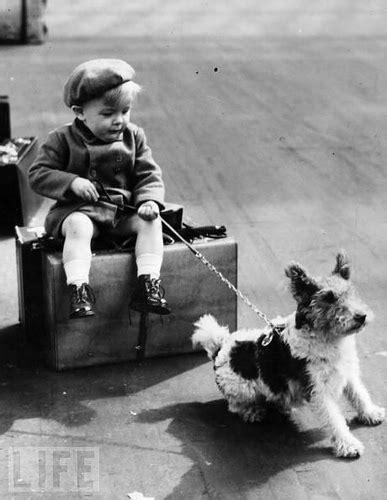 World War Ii Refugee Child Hangs Onto His  Ee  Dog Ee   Awaiting