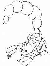 Scorpion Coloring Pages Scorpio Printable Animal Print Outline Animals Drawing Colouring Scorpions Books Sheets Insects Children Desert Habitat sketch template