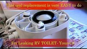 Repair Leaking Rv Toilet - New Gasket Replacement