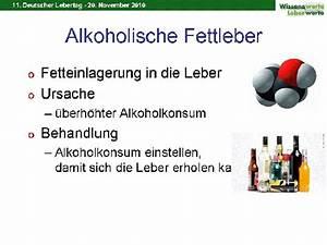 nicht alkoholische fettleber therapie