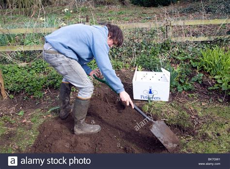 Burying Your Dog In The Backyard Burying Your Dog In The