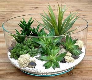 Plante Succulente Espèces Représentatives : succulentes vari t s entretien floraison rempotage ~ Nature-et-papiers.com Idées de Décoration