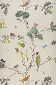 Papier Peint Papillon Oiseau : 17 meilleures id es propos de papier peint oiseaux sur ~ Zukunftsfamilie.com Idées de Décoration