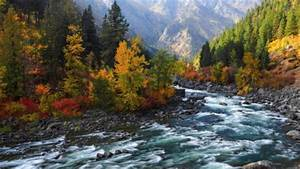 beautiful rapid flowing river in autumn - Rainbows ...